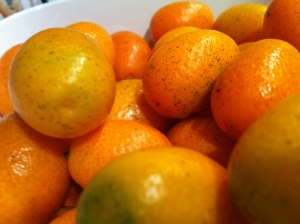 These are Kumquats